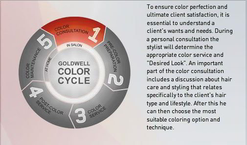 Goldwell Color Cycle