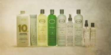 Soma hair coloring hair care products moss salon for Moss hair salon